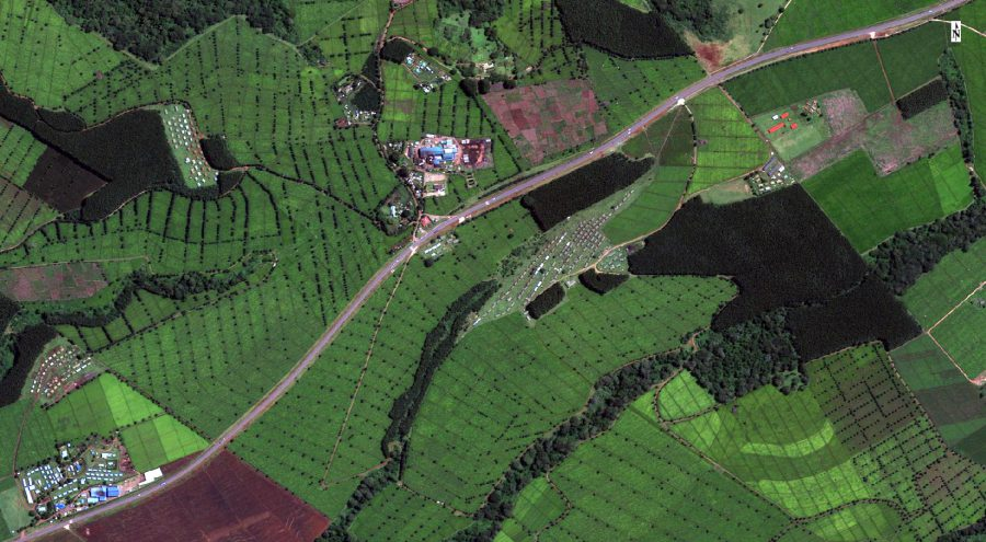 Satellite image from coffee crop optimisation Accord project